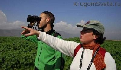 развитие туристической сферы