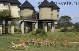 Момбаса Заповедник Shimba Hills