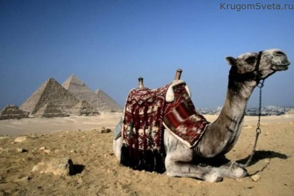 otdyih-v-egipte