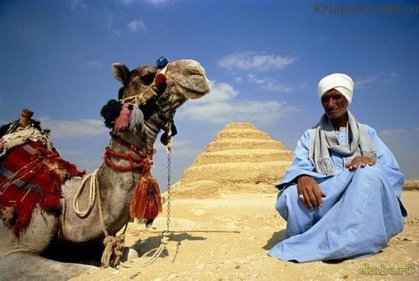 sovremennyie-zhiteli-stranyi-piramid-egipet