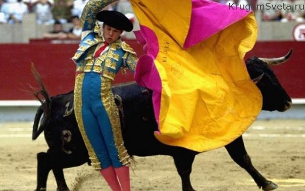 edem-na-korridu-ispaniya
