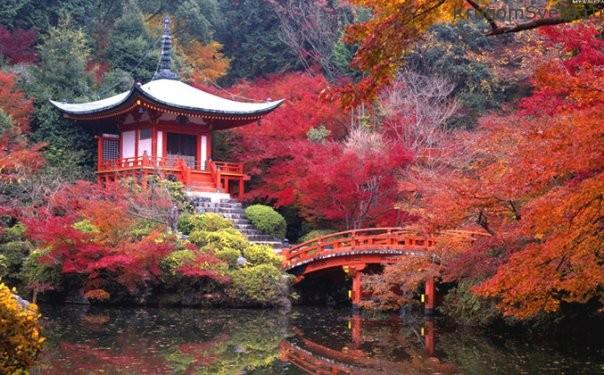 kioto-gorod-gde-zhivut-traditsii