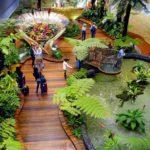 Аэропорт Сингапура предлагает пассажирам стать волшебниками