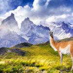 Северная Патагония, Чили