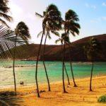На Гавайских островах закрывают пляжи